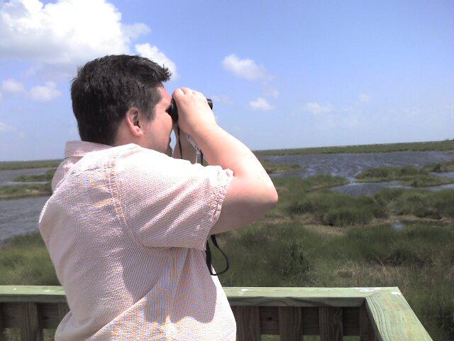 doing some bird watching